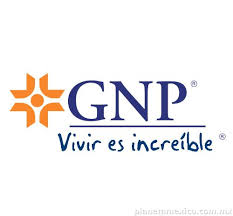 Perfil de mariana.alegria@gnp.com.mx